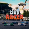 Tiny Racer Review (Switch)
