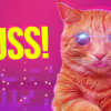 PUSS! Review (Switch)
