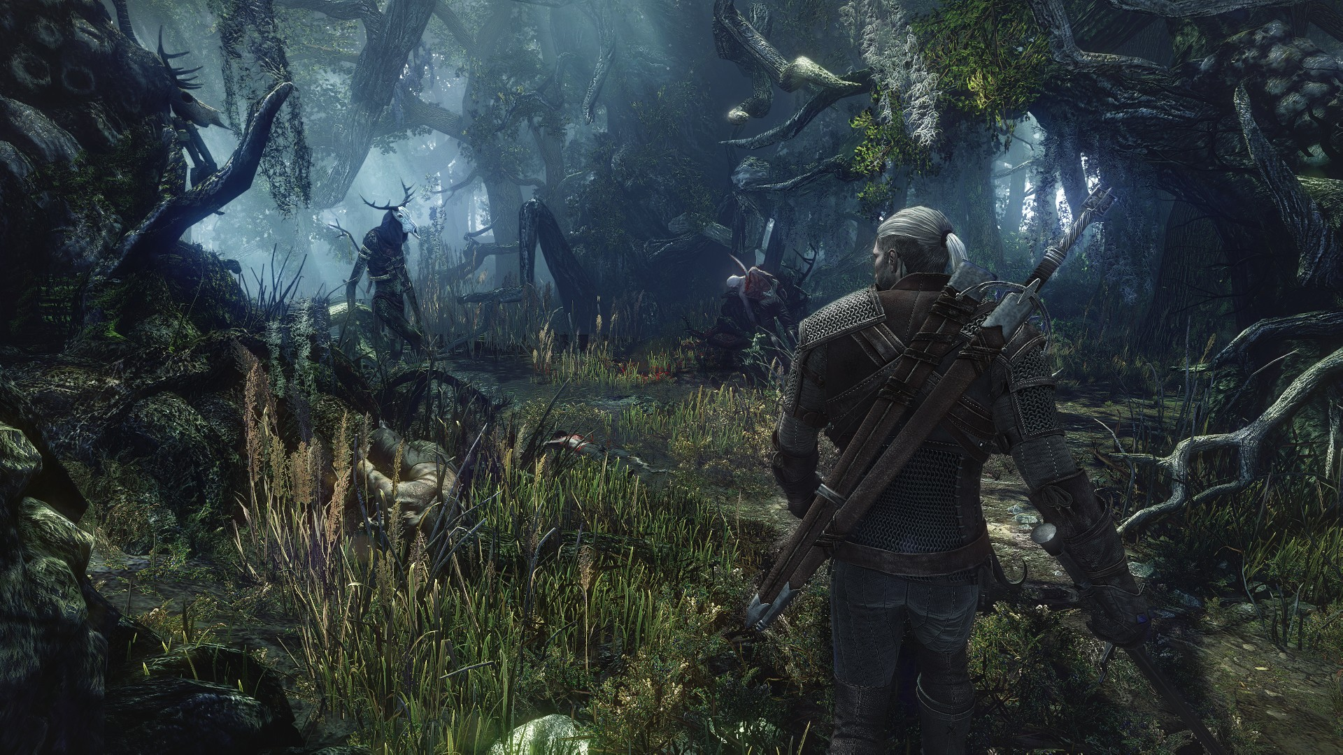 thewitcher3forest