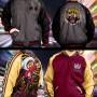 Tekken 7 Jacket