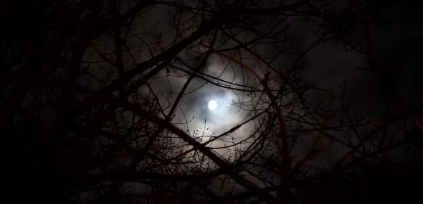 scary_moon