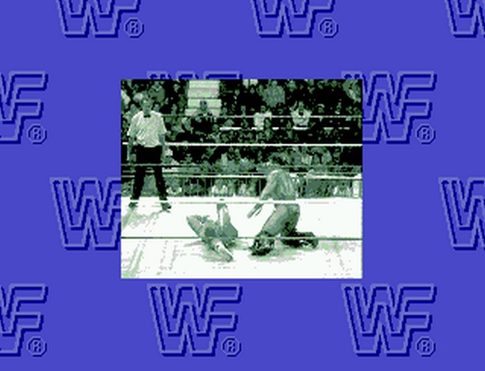 wwf-rage-in-the-cage-4