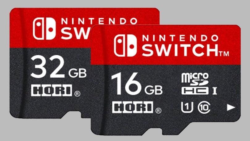 Nintendo Switch Micro SD Card