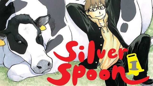 silver spoon review
