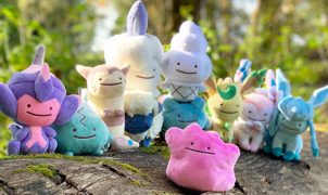 ditto plushies