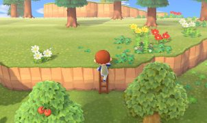 animal crossing new horizons ladder guide