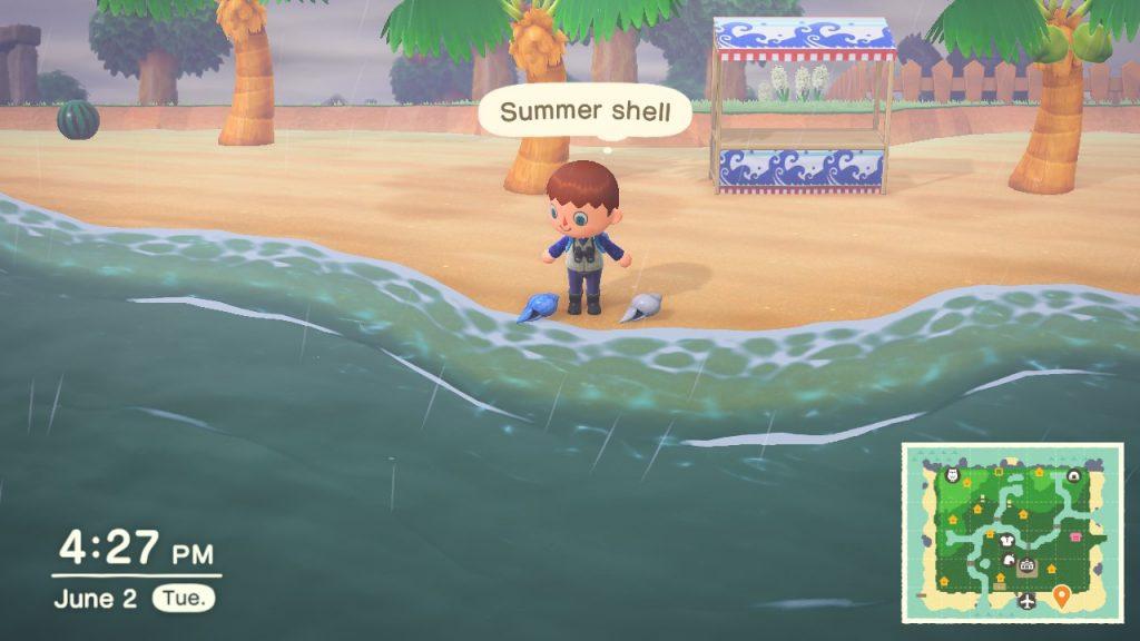 summer shells animal crossing