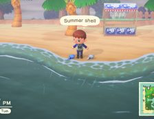 summer shells animal crossing