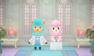 animal crossing: new horizons wedding event