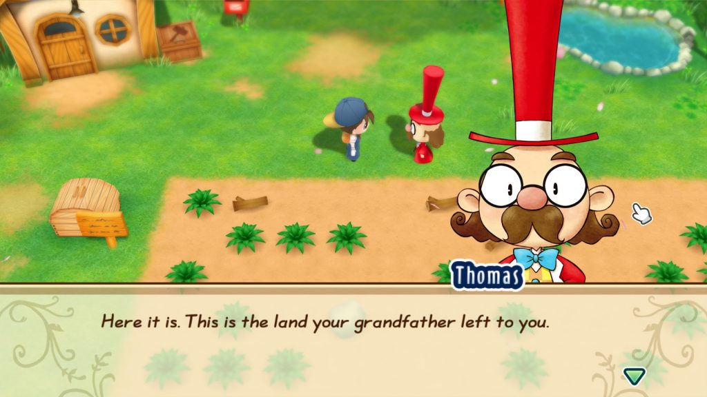Story of Seasons: Friends of Mineral Town 1