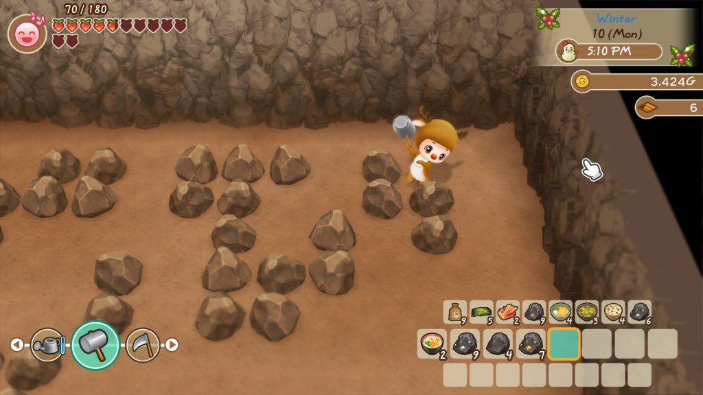 Story of Seasons: Friends of Mineral Town 5