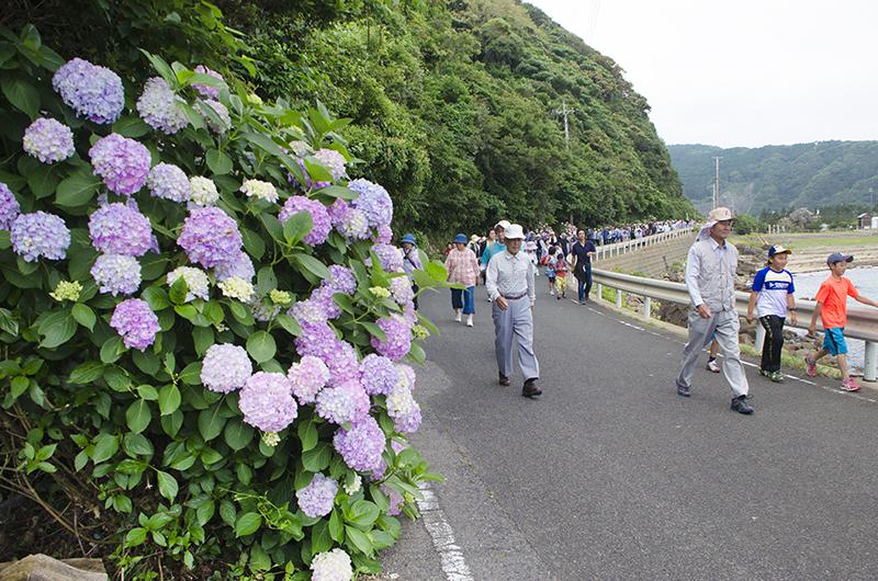 Visit Tsushima