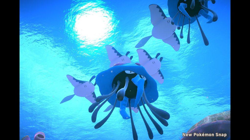 Postcards From Lental | Undersea